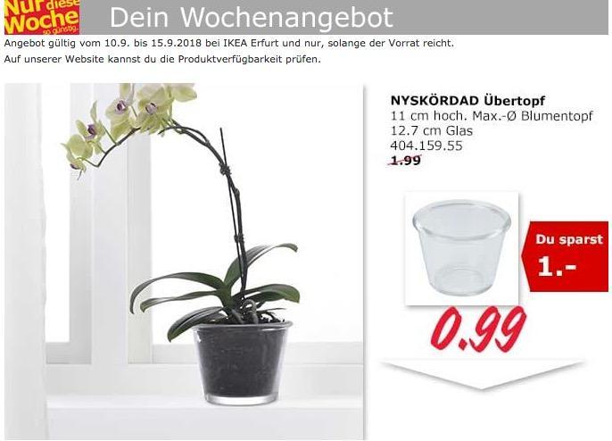 IKEA Erfurt - NYSKÖRDAD Übertopf