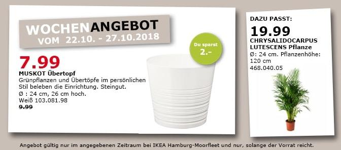 IKEA Hamburg-Moorfleet - MUSKOT Übertopf - jetzt 20% billiger